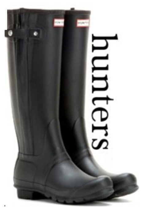 The Hunter Boot